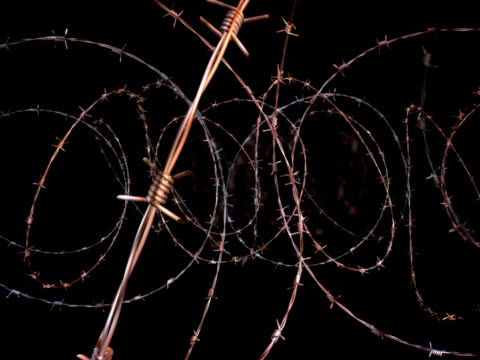 moving through barbed wire - loopable, alpha matte, pal - holocaust stock videos & royalty-free footage