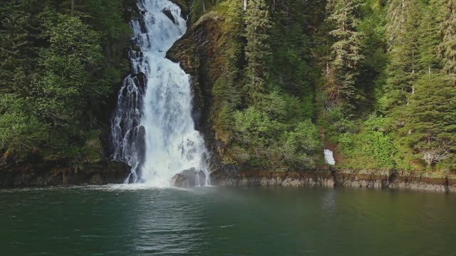 pov moving towards waterfall cascading down through northwest temperate rainforest, baranof island, inside passage, usa - temperate rainforest stock videos & royalty-free footage