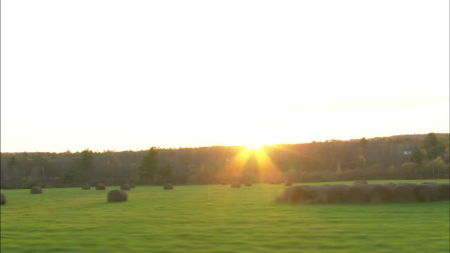 driving by large field scattered with hay barrels some bundled together some scattered bright sun sunrays over horizon of trees bg countryside - augusta maine stock videos & royalty-free footage