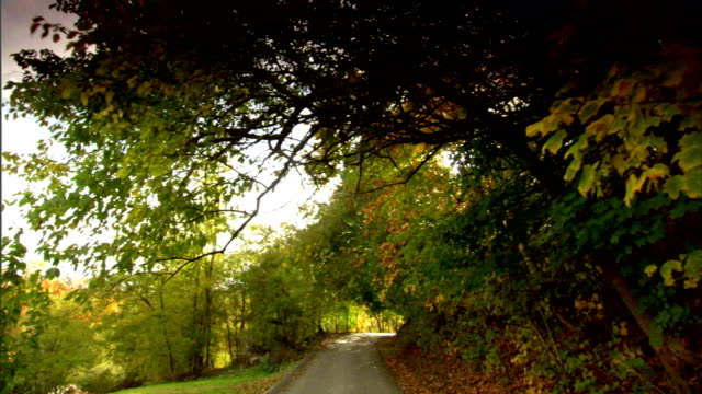 driving on narrow winding road uphill surrounded by autumn colored leaves trees passing by sign speed limit 15 fall rural adventure very scenic - speed limit sign stock videos & royalty-free footage