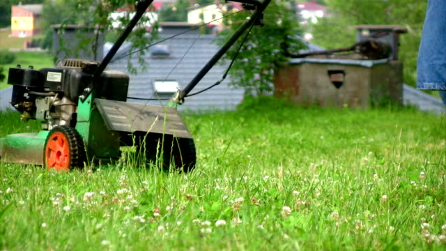mowing grass - lawn mower stock videos and b-roll footage