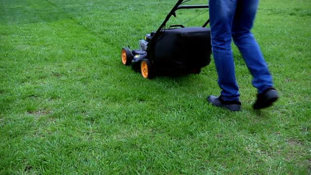 vidéos et rushes de tondre le gazon - pelouse