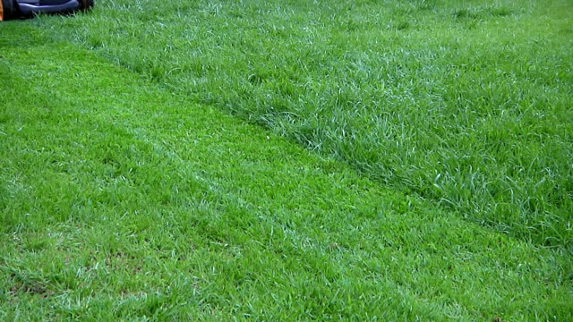 mowing grass - lawn stock videos & royalty-free footage