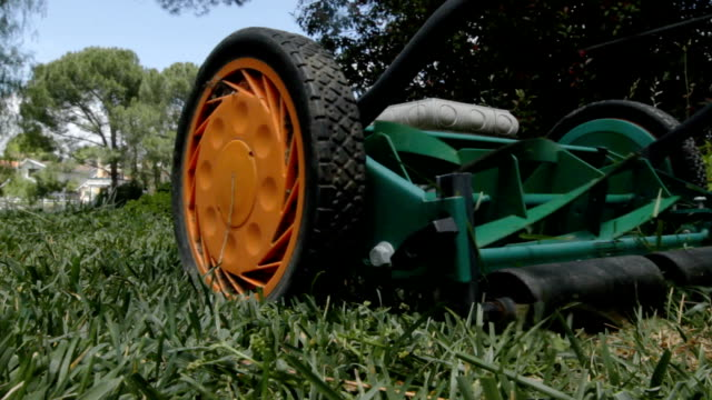 Mowing lawn closeup