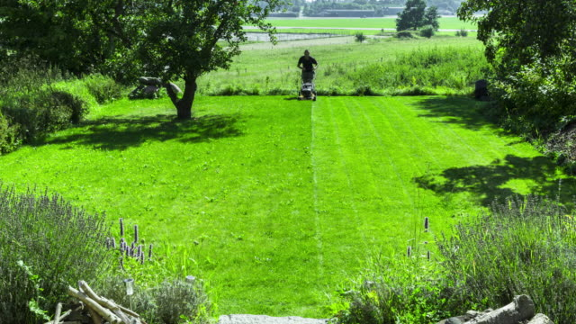 mowing the lawn - lawn stock videos & royalty-free footage