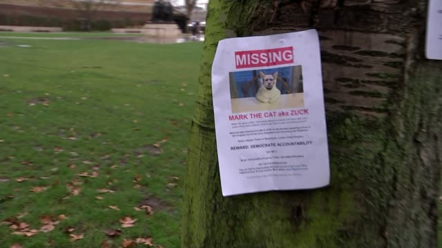 """mps call for new laws to tackle fake news on social media; england: london: westminster: ext woman hanging """"missing"""" poster for mark the cat aka mark... - fake stock videos & royalty-free footage"""