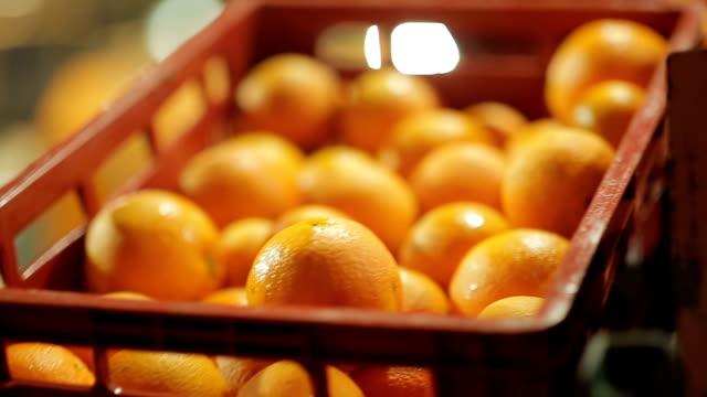 máquina funcionando em indústria de laranja - citrus fruit stock videos & royalty-free footage