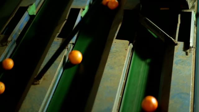 máquina funcionando em indústria de laranja - mode of transport stock videos & royalty-free footage