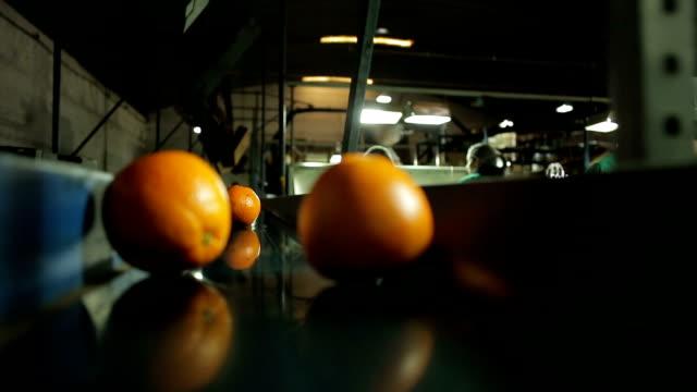 máquina funcionando em indústria de laranja - succo d'arancia video stock e b–roll
