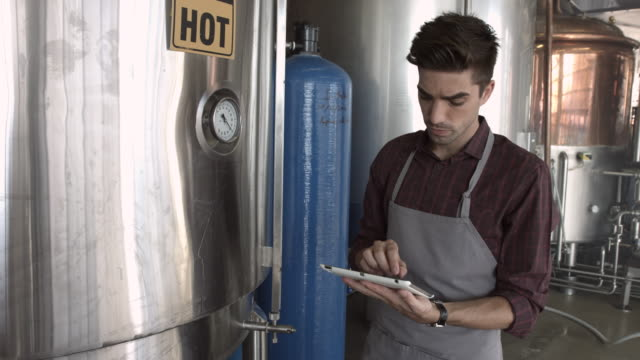 ms_man tjecking process at micro brewery, using digital tablet - brauerei stock-videos und b-roll-filmmaterial