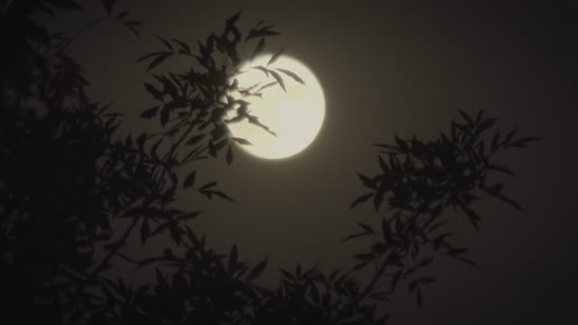 msêfull moon at night, beijing, china - full moon stock videos & royalty-free footage