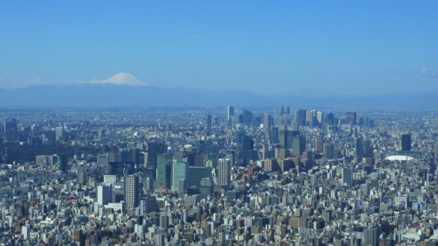 Mt Fuji and Central Tokyo from Tokyo Sky Tree Tembo deck