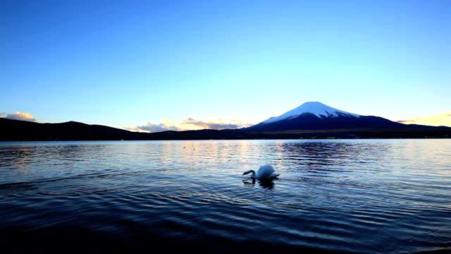 富士山やスワンカップルのプールの夕暮れ