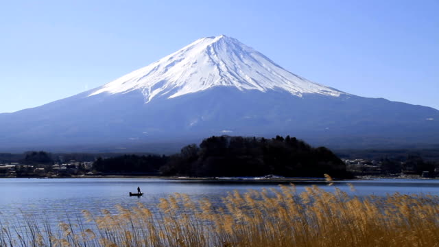 Mt Fuji behind a boat and grass