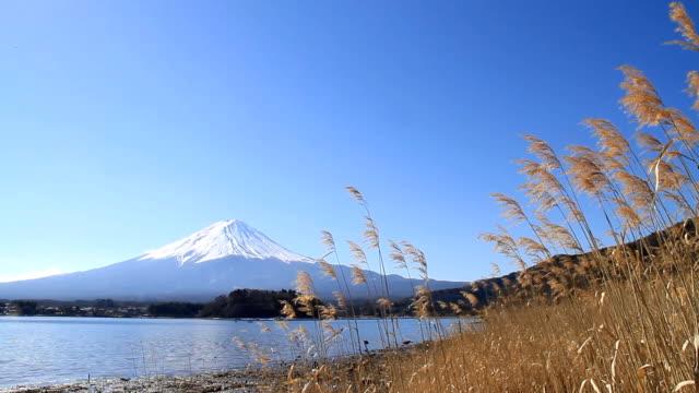 vídeos de stock e filmes b-roll de monte fuji em dia de vento - 2013