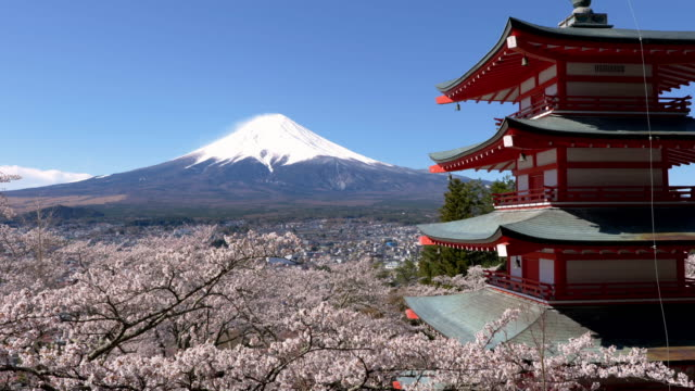 vídeos y material grabado en eventos de stock de mt. fuji over cherry blossoms and a pagoda - japón