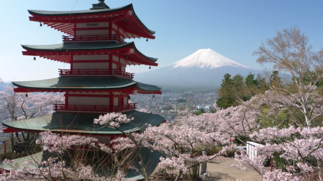 mt. fuji over cherry blossoms and a pagoda - pagode stock-videos und b-roll-filmmaterial
