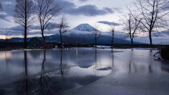 vidéos et rushes de mt. fuji reflected in a frozen pond in a winter morning morning - arbre sans feuillage