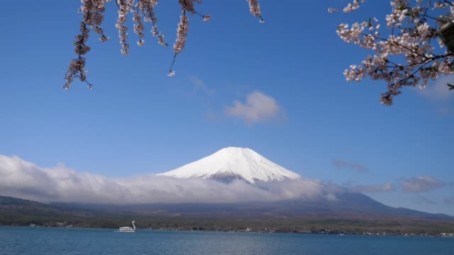 mt. fuji - satoyama scenery stock videos & royalty-free footage