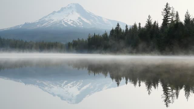 hd mt. hood from lake at dawn - portland oregon stock videos & royalty-free footage