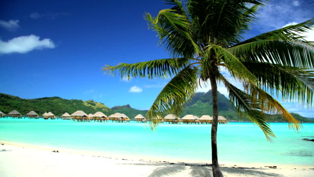mt otemanu overwater bungalows aquamarine lagoon bora bora - south pacific ocean stock-videos und b-roll-filmmaterial