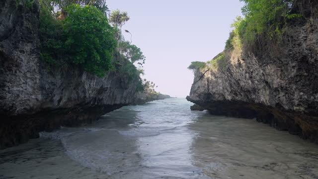 vidéos et rushes de plage de mtende, zanzibar. déchets dans la mer - arbre tropical