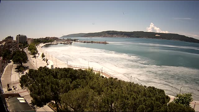 mucilage has covered the coast of canakkale province, dragging by the effect of the wind. cctv camera shows the mucilage is moving along the coast of... - magnification stock videos & royalty-free footage