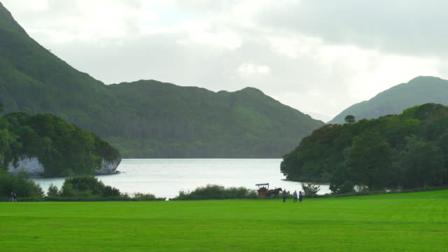 muckross lake viewed from muckross gardens - horse cart stock videos and b-roll footage