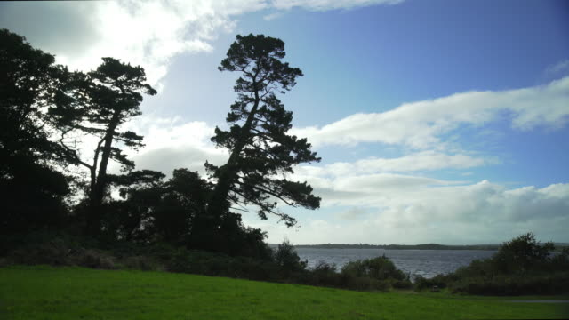 Muckross Lake Viewed From Muckross Gardens
