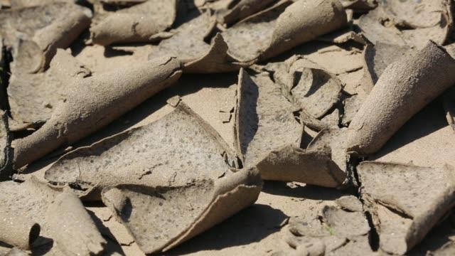 mud cracks in drying up flood debris after the catastrophic malawi floods, malawi, africa. - 丸くなる点の映像素材/bロール