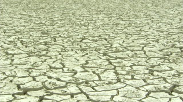 vídeos de stock, filmes e b-roll de mud curls on top of sediment - clima árido