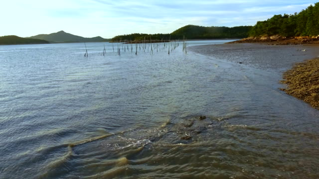 mud flats being exposed at low tide / sinan-gun, jeollanam-do, south korea - tide stock videos & royalty-free footage