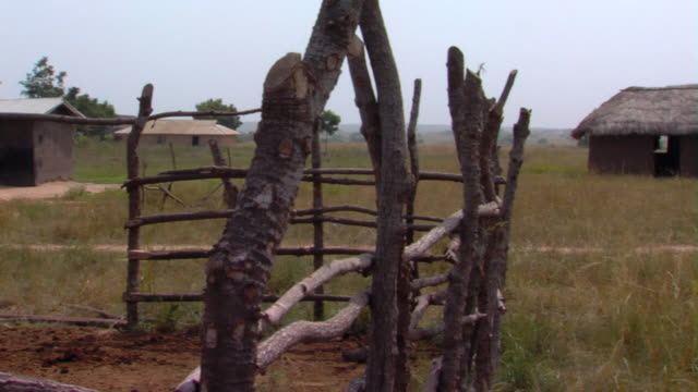 ms pan mud huts with thatched roof with stick fence in foreground, tamale, ghana - halmtak bildbanksvideor och videomaterial från bakom kulisserna