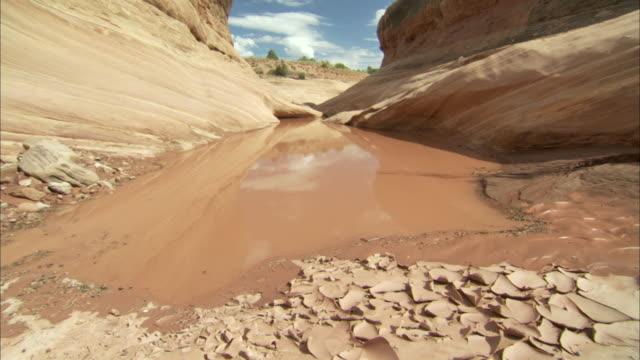 mud puddle in desert - sandstone stock videos & royalty-free footage