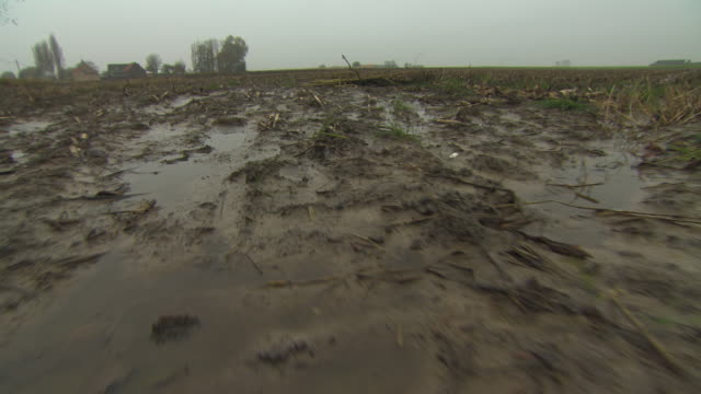 vídeos de stock e filmes b-roll de mud squelches underfoot as a person wearing boots trudges through boggy ground in northern france. - barro