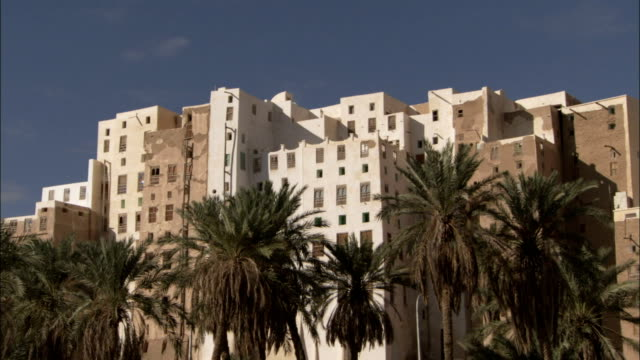 mud-brick high-rises tower over tall palm trees in the town of shibam yemen. - yemen stock videos and b-roll footage