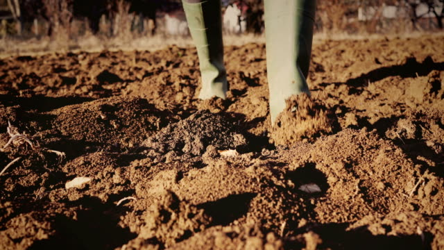 muddy gardening boots - pitchfork stock videos & royalty-free footage