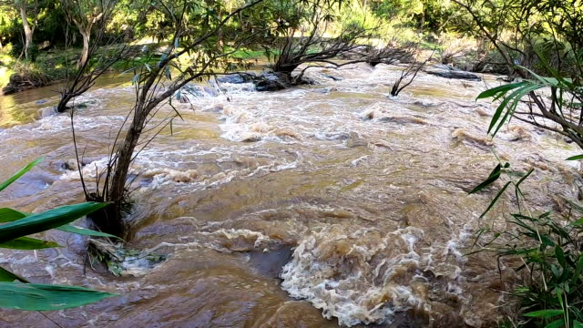 slo mo muddy river in rainy season. - tropical rainforest stock videos & royalty-free footage