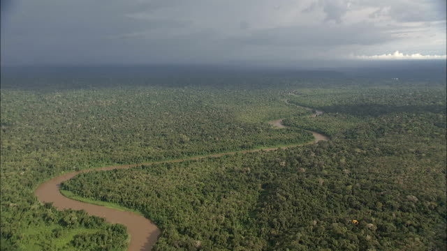 A muddy river winds through the Amazon Rainforest. Available in HD.