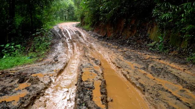 vídeos de stock, filmes e b-roll de 4k estrada enlameada ws na floresta tropical. - estrada em terra batida