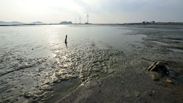 mudflat exposing at low tide in tando port of daebudo island / ansan-si, gyeonggi-do, south korea - mud flat stock videos & royalty-free footage