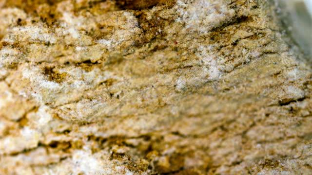 mudstone mineral sample under light microscopy - gemology stock videos & royalty-free footage