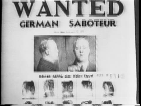 mug shots walter kappe, joseph schmidt, and rheinhold rudolf barth / montage of police working in police stations and at switchboards / policeman... - fbi video stock e b–roll