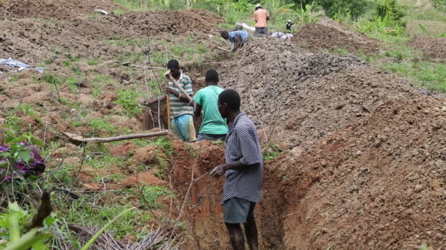 a multi clip of several farmers who are building a new trench on a field in a rural area near pilate haiti for a watershed project to stop erosion - plough stock videos & royalty-free footage