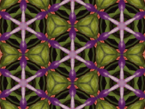 cu cgi multi colored evolving kaleidoscope pattern  - intricacy stock videos & royalty-free footage