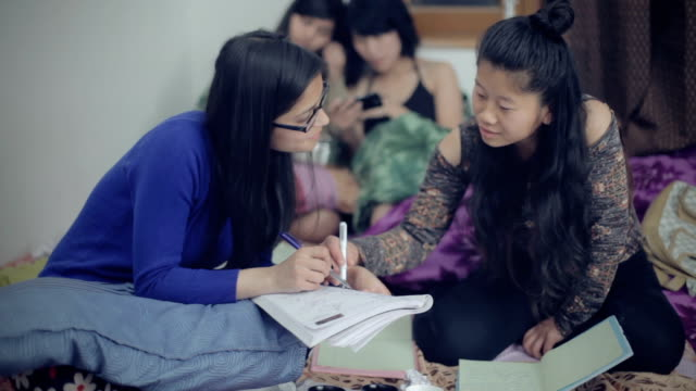 multi ethnic friends studying together in dorm room - dorm room stock videos and b-roll footage