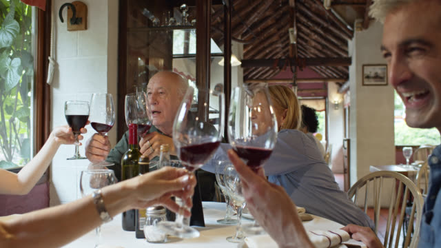multi generation family toasting with wine in restaurant - multi generation family stock videos & royalty-free footage