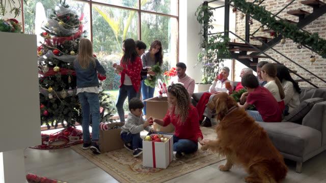 mehrgenerationenfamilie schmückt den weihnachtsbaum alle mit spaß - weihnachten stock-videos und b-roll-filmmaterial