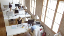 Multi-ethnic business people working in new office