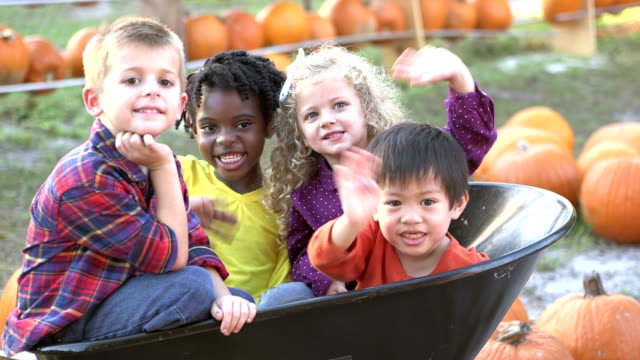 Multi-ethnic children in wheelbarrow, at pumpkin patch
